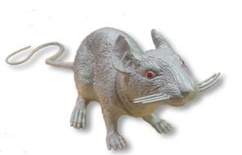 Grey plastic rat