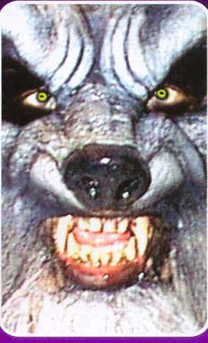 Upper and Lower Werewolf Jaws