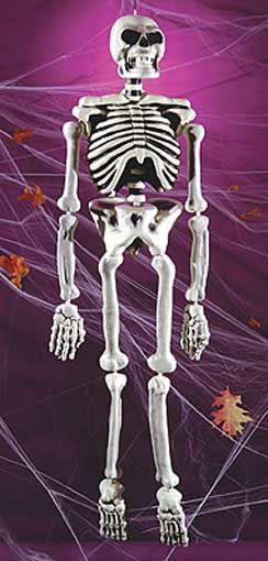 White Plastic Skeleton 152cm