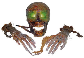 Mummified LED Skull