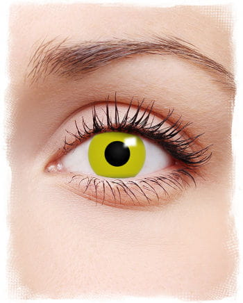 Kontaktlinsen Rabe