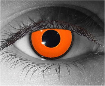 Kontaktlinsen Pfeilgift Frosch