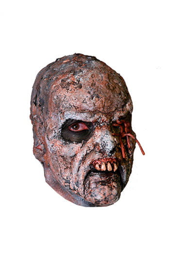 Rotten Zombie Gesichtsapplikation