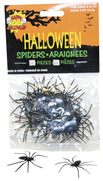 Schwarze Wasserspinnen 24 St.