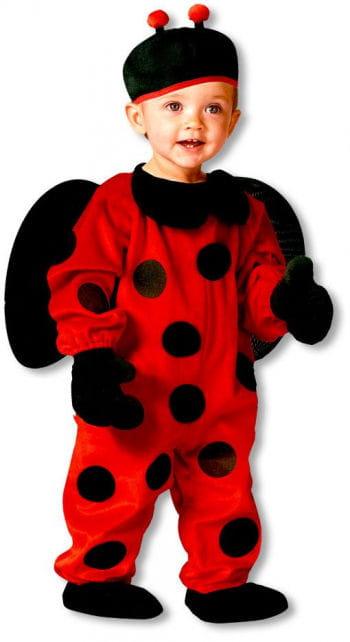 Sweet ladybug costume S