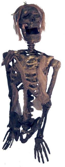 Verottendes Kartoffelacker skeleton