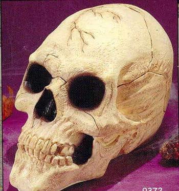 Skull Deluxe Groß Beige
