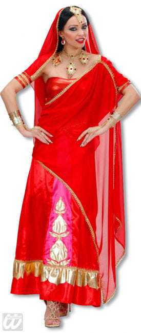 Bollywood Diva Costume