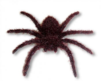 Hairy Mini Spider Brown