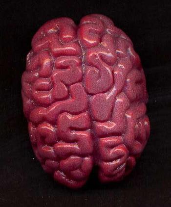 Slimy Glibber Gehirn