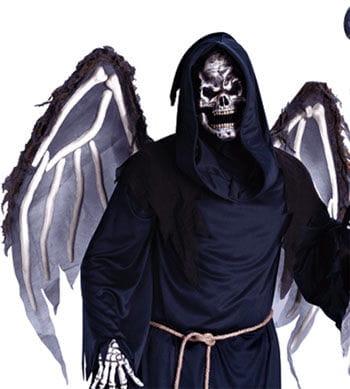 bone wings