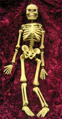 Hanging Skeleton 95cm