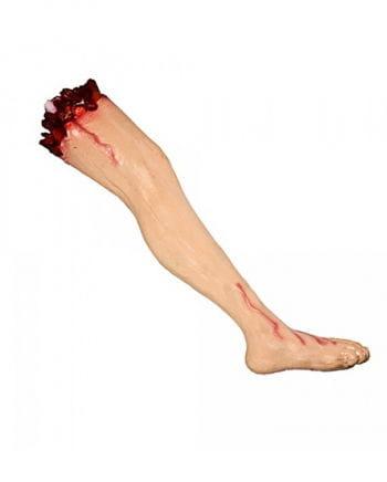 Abgetrenntes Bein mit Oberschenkel