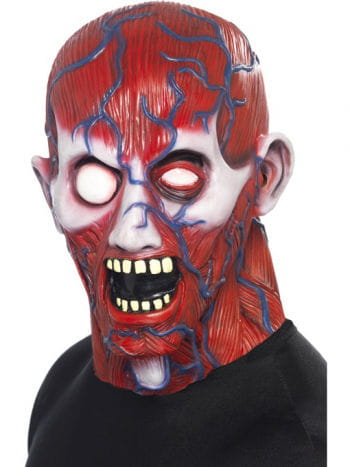 Anatomie Mann Maske