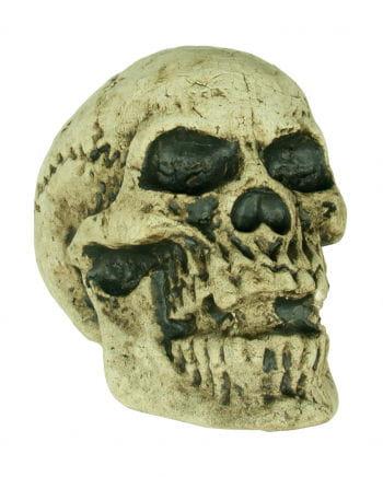 Wetterfester Antiker Totenschädel