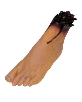 Foot left Vinyl