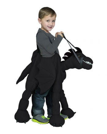 Dragon Rider Child Costume