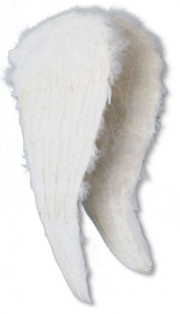 Angel Wings White