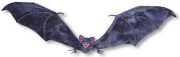 Angriffslustige  Fledermaus