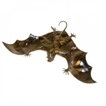 Bat for hanging