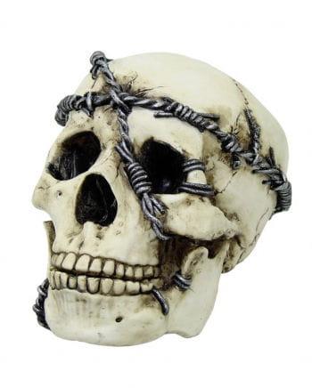 Totenschädel mit Stacheldraht