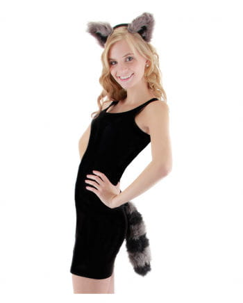 Raccoon Costume Accessories Set