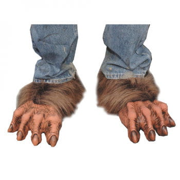 Killer wolf feet brown