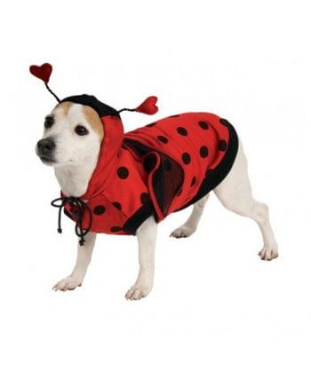 Marienkäfer Hundekostüm