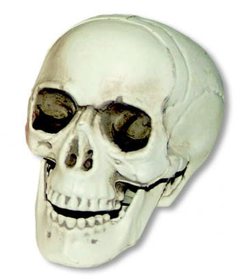 Mini Skull with movable jaw