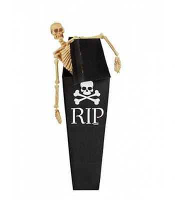 Cardboard coffin with skull motive