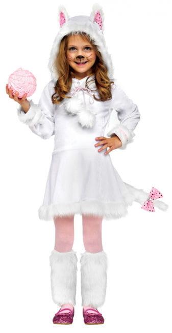 Perser Kätzchen Kostüm