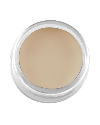 Professional cream makeup pale