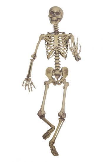 Realistische Skelett Hängefigur