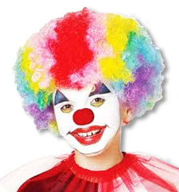 Rainbow Clown Wig Child