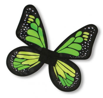 Satin butterfly wings Green