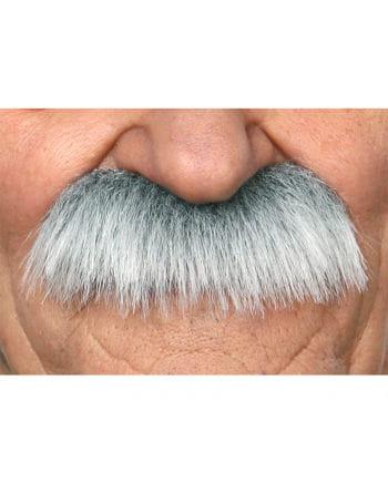 mustache gray
