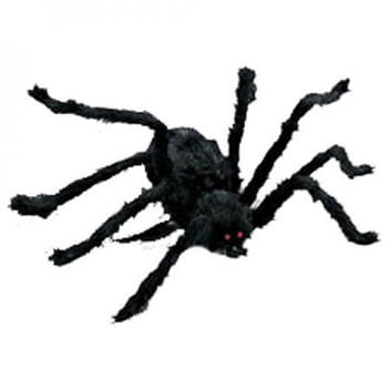 Black Halloween Spider 116cm