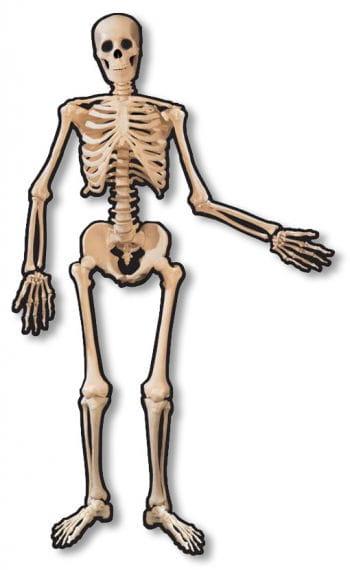 Skeleton door decoration