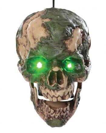 Sprechender verotteter Zombie Schädel