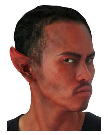 Teufelsohren / Devil Ears