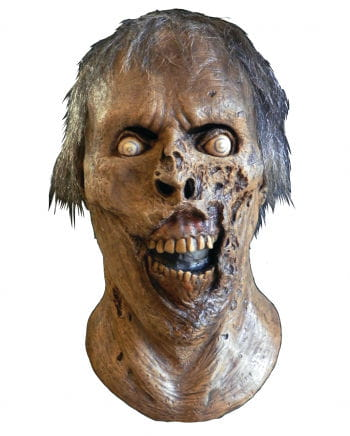 The Walking Dead skeleton mask Walker