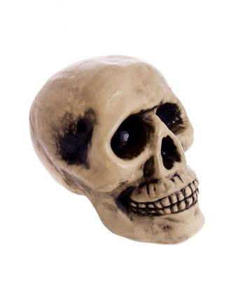Totenkopf beige