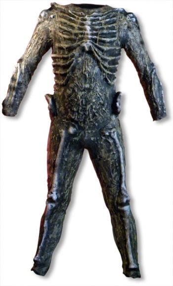 Rotting Skeleton Costume Deluxe 3D