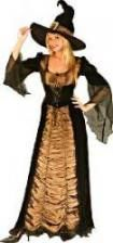 Taffeta Witch DLX Costume. ML