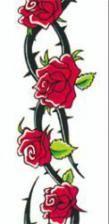 Tattoo Rosen und Dornenkranz