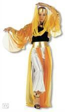 Harem Dancer Costume L