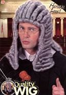 Richter Perücke grau