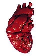 Blutiges Latex Herz