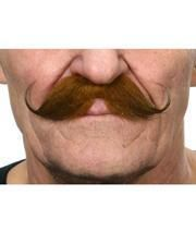 Gezwirbelter mustache mottled brown-black