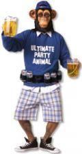 Party Monkey Costume